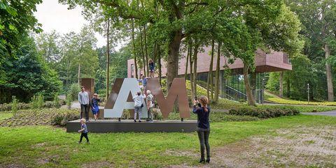 Tree, Public space, Community, Leisure, Campus, Park, Fun, Grass, Walking, Adaptation,