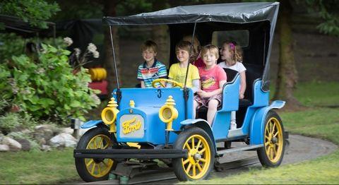 Land vehicle, Vehicle, Vintage car, Car, Motor vehicle, Antique car, Classic car, Ford, Classic,