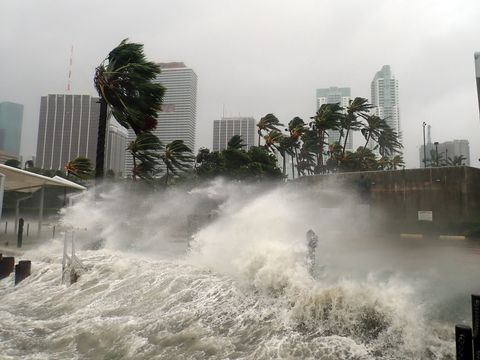 Water, Wave, Atmospheric phenomenon, Storm, Tide, City, Tropical cyclone, Wind wave, Event, Wind,