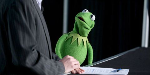 Amphibian, Terrestrial animal, Toy, Plush, Animation, Fictional character, Sweater, Humour, Puppet, Frog,