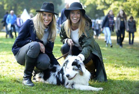 Mammal, Dog, Canidae, Dog breed, Border collie, Companion dog, Carnivore, Australian shepherd, Grass, Sporting Group,