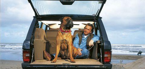 Dog, Canidae, Carnivore, Vehicle, Sporting Group, Car, Dog breed, Guard dog, Vehicle door, Hunting dog,
