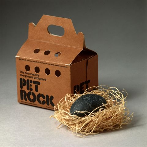 Bird nest, Still life photography, Nest, Straw, Cardboard, Toy block, Oval, Box,
