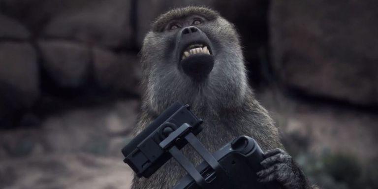 Image result for 2001 monkeys