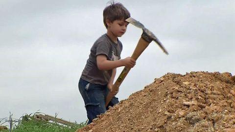 Soil, Grass family, Tool, Hand tool, Garden tool, Hay, Straw, Brush,