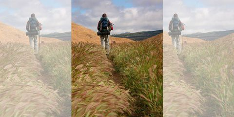 Human, Recreation, Outdoor recreation, People in nature, Adventure, Trail, Luggage and bags, Grassland, Backpacking, Walking,