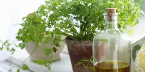 Fluid, Liquid, Bottle, Leaf, Ingredient, Glass bottle, Drink, Drinkware, Flowerpot, Alcoholic beverage,