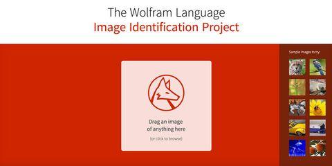 Text, Red, Font, Rectangle, Circle, Symbol, Graphics,
