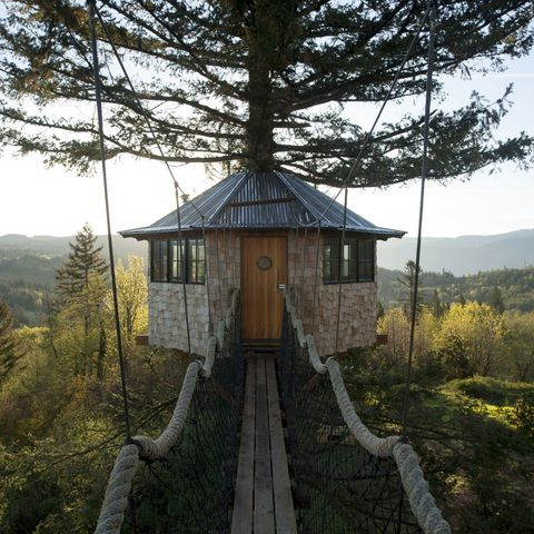 Hill station, Rural area, Stairs, Roof, Conifer, Temperate broadleaf and mixed forest, Walkway, Chaparral,