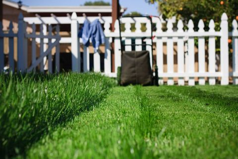 How And Why You Should Tear Up Your Beautiful Lawn