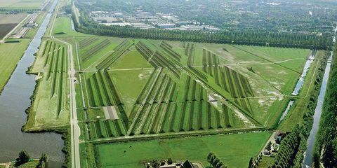 Plain, Landscape, Land lot, Field, Aerial photography, Bird's-eye view, Plantation, Urban design, Photography, Agriculture,