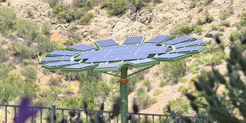 James Cameron Designed A Solar Array That Looks Like A