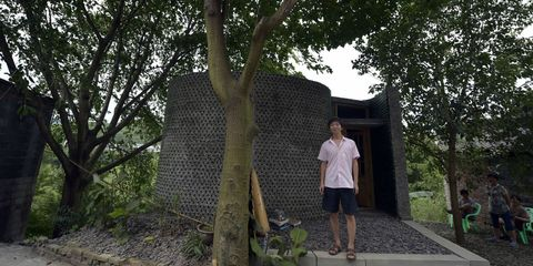 Human, Branch, Tree, Leisure, Woody plant, Temple, Trunk, Tints and shades, Bermuda shorts, Shade,
