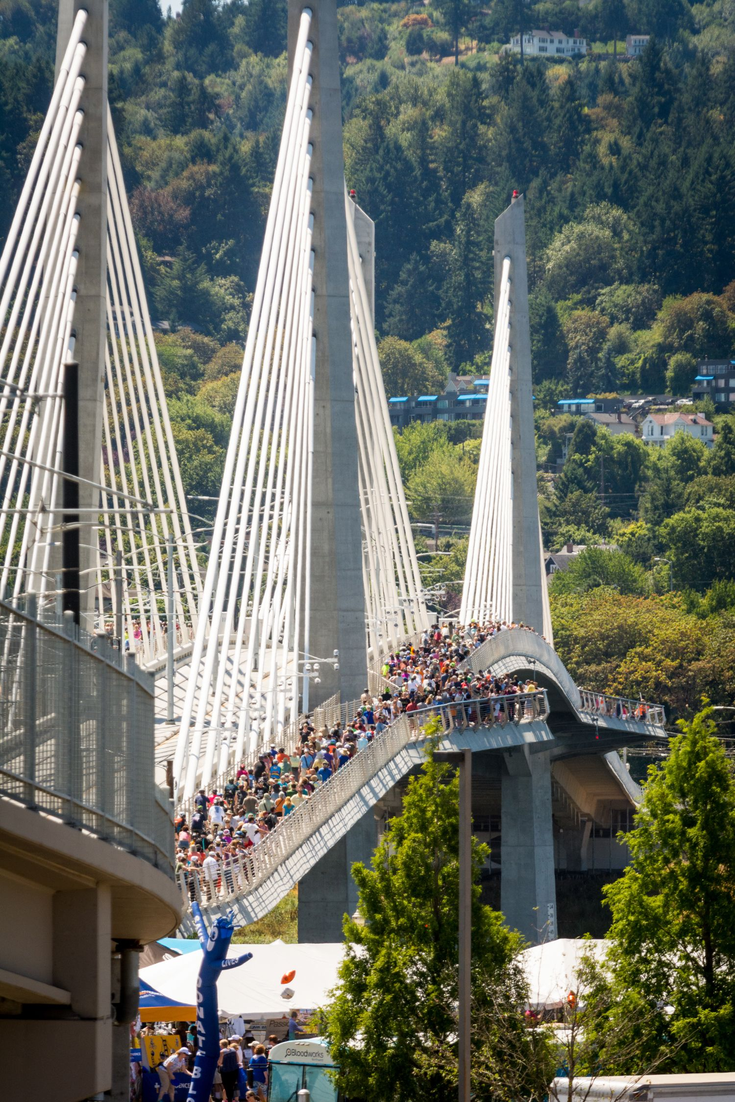 <p>The $135 million, 1,720-foot-long cable-stayed structure is owned by TriMet, the region's public transit agency. TriMet needed a new to connect its $1.49 billion Orange Line light rail extension across the river, but the area just south of many of Portland's Willamette crossings lacked the existing road infrastructure to accommodate a new vehicle-heavy bridge. Thus, the idea of a big no-car bridge was born. Because it doesn't need to accommodate four or six lanes of vehicle traffic, Tilikum Crossing offers up a completely different look. It comes in at a narrow 75.5 feet wide, and that includes two 14-foot-wide bicycle and pedestrian paths.</p>