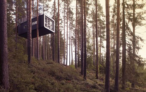 """<p><strong>Location:</strong> Harads, Sweden, in the heart of Swedish Lapland</p><p><strong>The experience:</strong> A stunning hotel suspended in air, sort of like a high-end Ikea treehouse. Activities range from dog sledding in the winter to horseback riding and hiking in summer. </p><p><strong>Don't miss: </strong><strong></strong>A nighttime safari to see the majestic northern lights.</p><p><strong>Learn more:</strong> <a href=""""http://treehotel.se/"""" target=""""_blank"""">Treehotel</a></p>"""