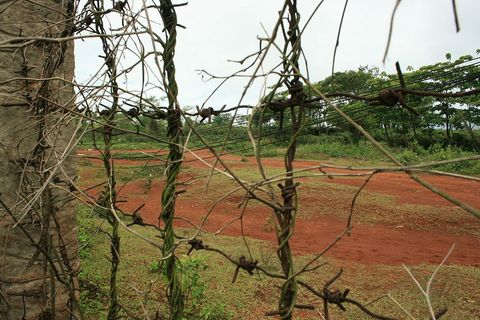 "<p>In early 1968, U.S. Marines at a small, remote combat base at Khe San, just south of the Demilitarized Zone, held off a North Vietnamese siege for 75 days. The siege marked one of the opening moves in the Tet Offensive. Coffee fields now grow over the former battlefield, and only a handful of abandoned helicopters, a few restored bunkers, an overgrown airstrip, and a small museum mark the place where 500 Marines and 10,000 North Vietnamese troops fought and died.</p><p>The U.S. abandoned the base at Khe San in April 1971. Two years later, North Vietnamese forces rebuilt the airstrip and used it to fly to points further south. Today, plants have begun to reclaim the old dirt airstrip, though patches of the runway show through.</p><p>Khe San is now a regular stop for bus tours of the area. A<a href=""http://www.lonelyplanet.com/vietnam/central-vietnam/demilitarised-zone-dmz/sights/historic/khe-sanh-combat-base""> museum</a>, whose relatively new construction contrasts with the base, displays photographs and weapons from the Vietnam War. Outside, visitors can walk among American helicopters in varying states of disrepair and explore restored bunkers from the former base.</p>"