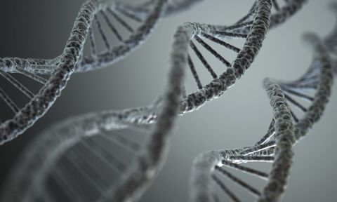 3 Scientists Win Chemistry Nobel Prize for Finding Out How Broken DNA Gets Fixed