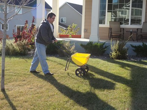 Plant, Shrub, Garden, Wheelbarrow, People in nature, Real estate, Lawn, Residential area, Backyard, House,