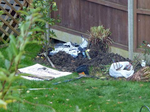 Backyard, Groundcover, Litter, Yard, Garden, Home fencing, Waste, Herb,