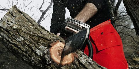 Stihl Chainsaw Reviews With Echo, Husqvarna, & Jonsered