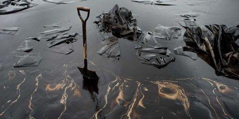 oil-spill-sponge.jpg
