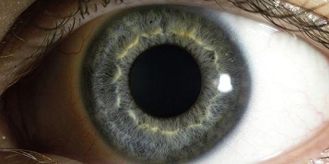 bionic-eyes.jpg