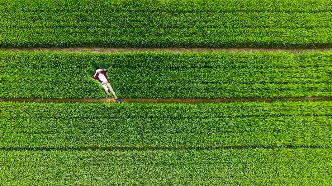 The Very Best Drone Photos of 2015