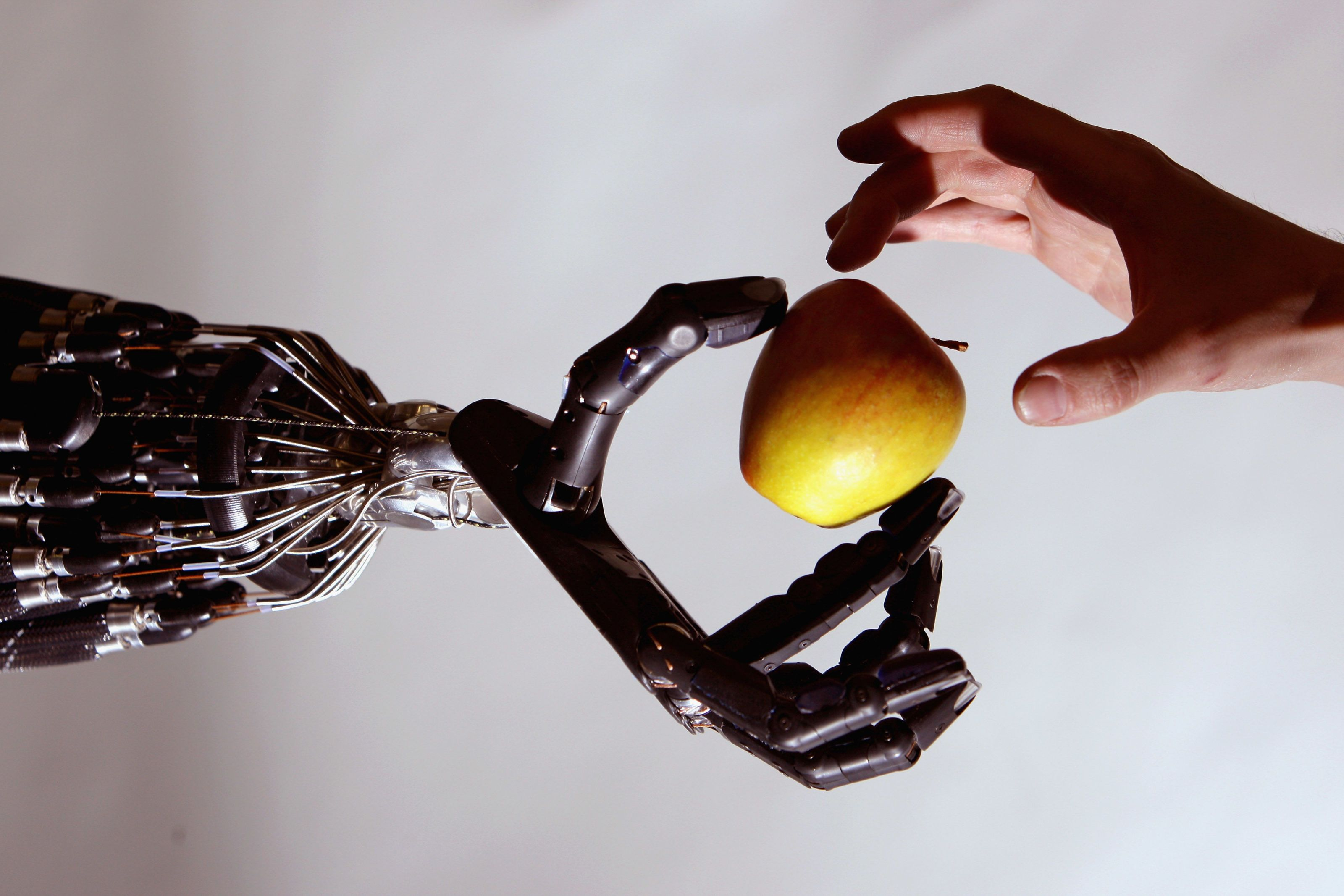 Synthetic Skin That Remembers Can Teach Robot Hands To Be Gentle