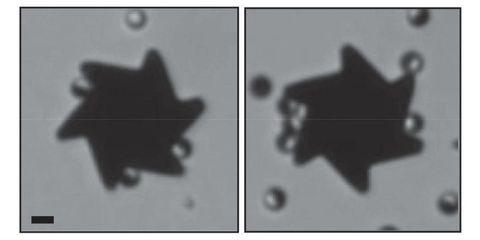 Black-and-white, Monochrome, Monochrome photography, Shadow,