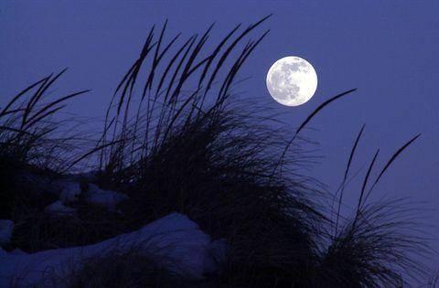full-moon-jersey-shore.jpg