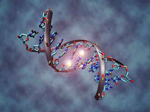 Scientists Win Approval to Use Gene Editing Technology on Human Embryos