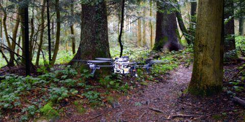 trail-drone.jpg