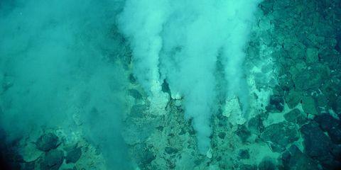 Body of water, Blue, Fluid, Green, Aqua, Turquoise, Teal, Underwater, Azure, Reef,