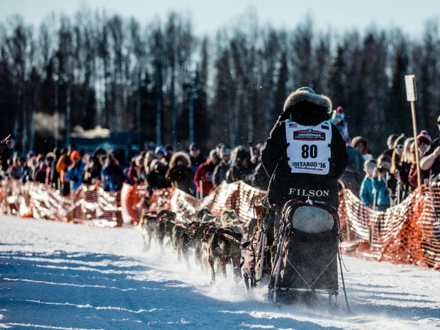 Nome or Bust: What It's Like To Take On the Iditarod