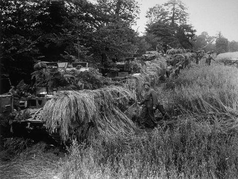Monochrome, Monochrome photography, Rural area, Black-and-white, Plantation,