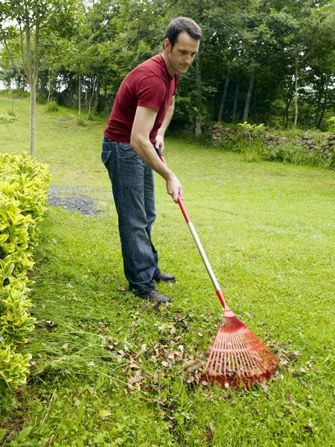 <p>Before you fire up your mower, make a pass through the yard and remove anything that's not grass: sticks, rocks, and wayward golf balls. Not only will this keep you out of the ER, the blades on your mower will remain sharp through fall. </p>