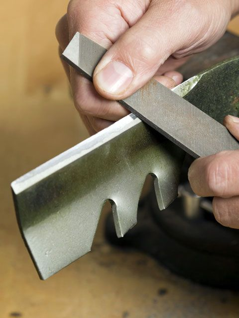 <p>Dull blades are like kryptonite to an otherwise healthy yard: You'll be wasting your time with a poor cut, and you could seriously harm your grass. That's because dull blades rip and tear at your lawn, making it vulnerable to pests and disease. Check for sharpness before you fire up the mower.</p>