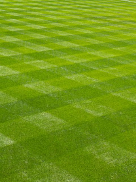 Summer Mowing Tips Best Lawn Care Tips For Healthy Grass
