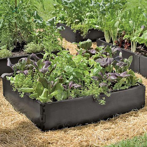 Gardener's Grow Beds