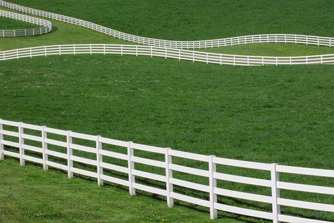 Green, Grass, White, Line, Pasture, Fence, Urban design, Race track,
