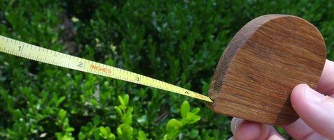 wood tape measure