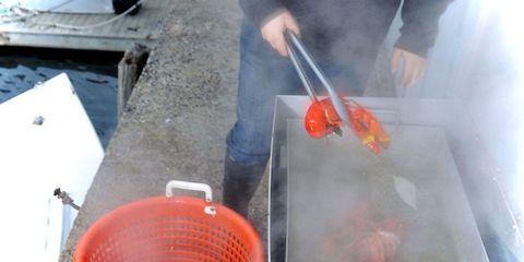 Gas, Smoke, Coquelicot, Steel, Ash,
