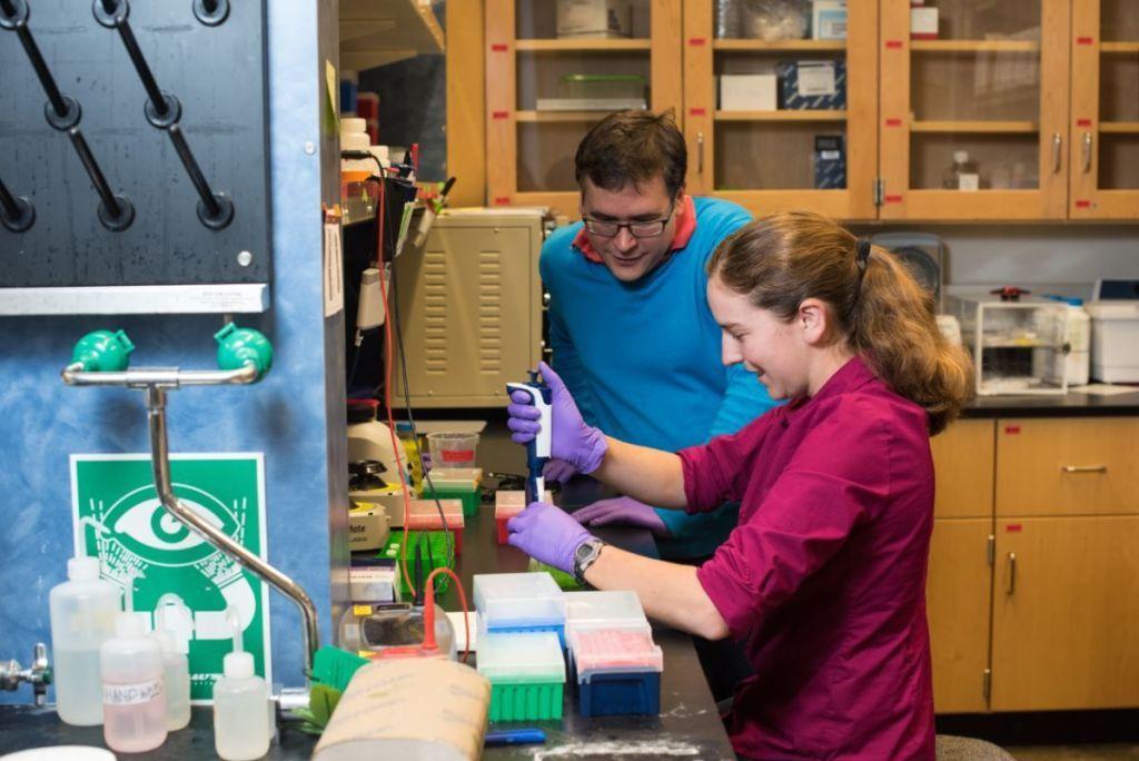 Scientists Fit Hundreds of Megabytes of Data onto DNA