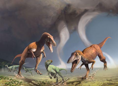 Organism, Natural environment, Vertebrate, Terrestrial animal, Extinction, Adaptation, Ecoregion, Dinosaur, Art, Wildlife,
