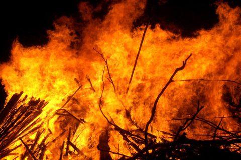 Vegetation, Brown, Natural environment, Yellow, Event, Fire, Heat, Plant community, Orange, Flame,