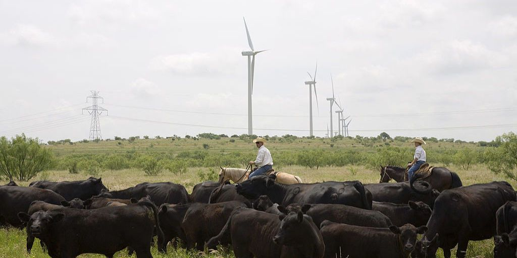 Amazon Builds Giant Wind Farm In Texas
