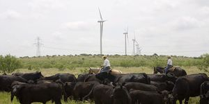 Texas wind energy turbine