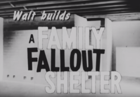 Walt Family Fallout Shelter