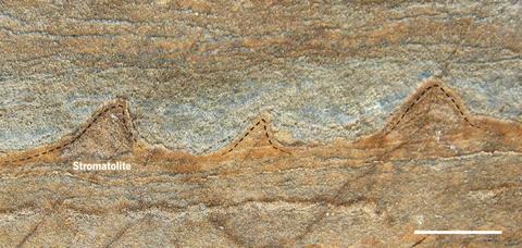 Brown, Geology, Tan, Beige, Painting, Intrusion,