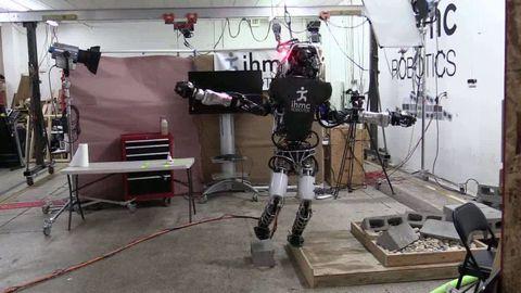 Atlas Robot Balancing on One Foot